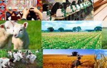 تصویب اعطای ۷۰ میلیارد ریال تسهیلات به پروژههای اشتغالزایی در آذربایجان شرقی