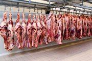 پشتصحنه گرانی گوشت از زبان مدیر اسبق اتحادیه دامداران/افزایش قیمت گوشت طبیعی است ولی نه تا ۱۲۰هزار تومان