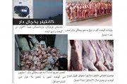 آخرین وضعیت دپو ۱۷ هزار تن گوشت قرمز/ مسئولان درباره بلاتکلیفی ۱۲ هزار تن شفافسازی کنند