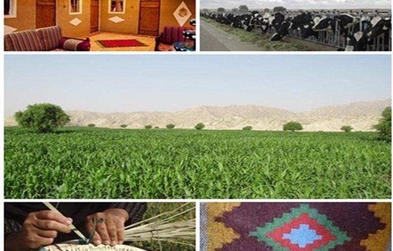 باید به سمت خوشهسازی اشتغال روستایی در آذربایجان شرقی حرکت کنیم