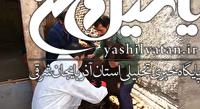 واکسیناسیون دام های آذربایجان شرقی علیه تب برفکی