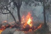 جنگل های ارسباران در آتش می سوزد/۳۰۰ هکتار طعمه حریق شد/ آتش سوزی مراتع خدا آفرین مهار شد + تصاویر