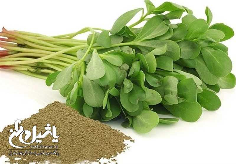درمان ۹۹ درد با مصرف این نوع سبزی