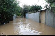 خسارت سنگین سیلاب در ۱۴ شهرستان استان گیلان / کشت دوم مزارع برنج از بین رفت