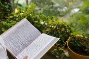 سازمان دارالقرآن، قرآنهای سوخته مصلای شهر قدس را جایگزین کرد