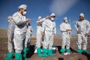 آنفلوآنزایی که منجر به مرگ و میر در جامعه شده مرغی نیست