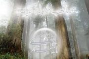 امام باقر چه راهکاری را در برخورد با شدائد آخرالزمان معرفی میکنند؟