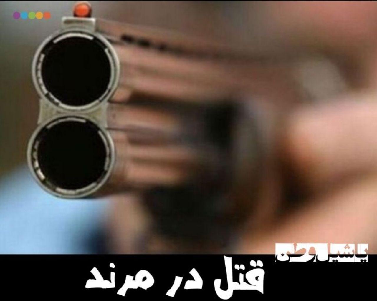 قتل شوهر در مرند توسط همسر جوان